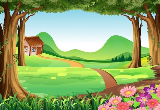 Scena con casa nel campo
