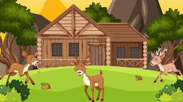 Scena con cottage in legno nel campo