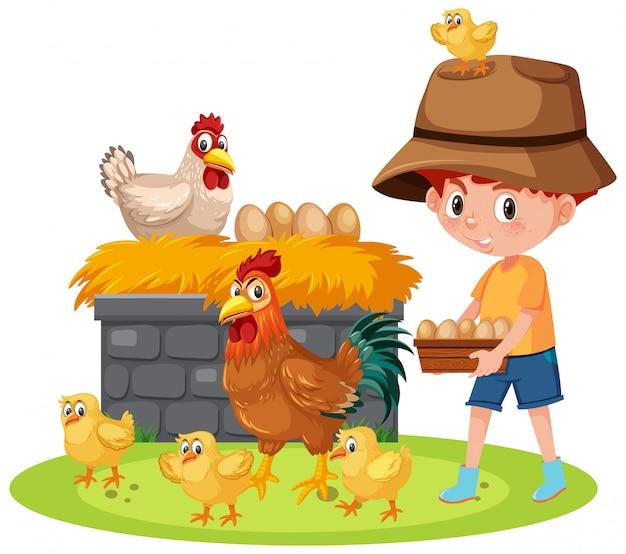 Scena con i polli d'alimentazione del ragazzo sull'azienda agricola