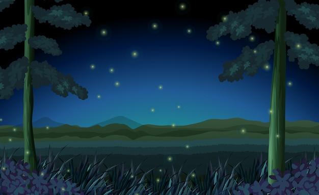 Scena con le lucciole nella foresta di notte