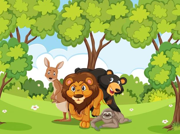 Scena con molti animali selvatici nella foresta
