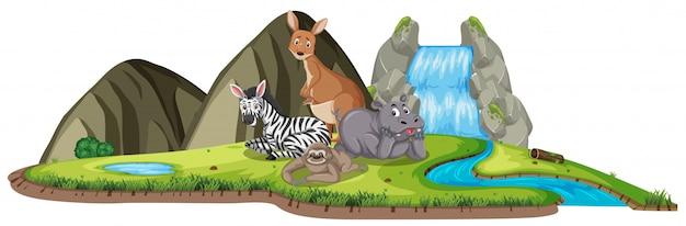 Scena con molti animali selvatici vicino alla cascata durante il giorno