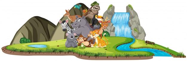 Scena con molti animali selvatici vicino alla cascata