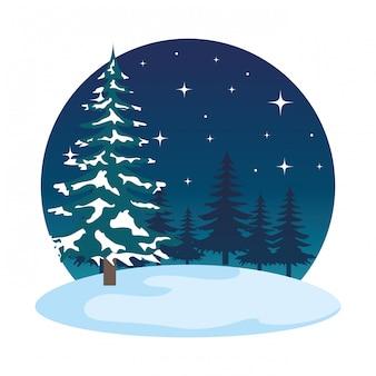 Scena del campo di snowscape di notte