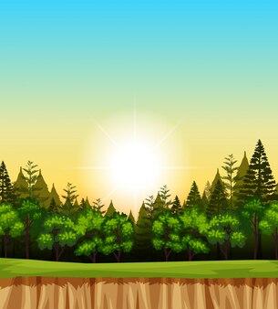 Scena della foresta con alberi sulla scogliera
