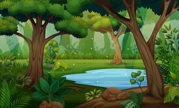 Scena della foresta con gli alberi e l'illustrazione dello stagno