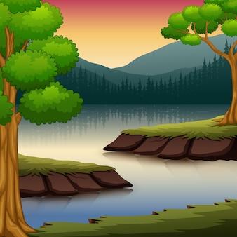 Scena della foresta con molti alberi e illustrazione del fiume