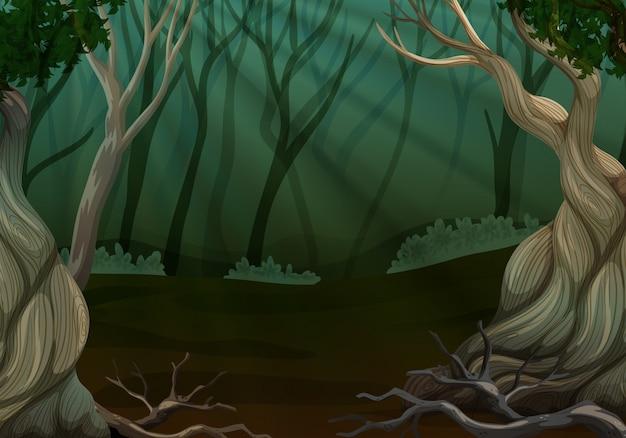 Scena della foresta profonda con molti alberi