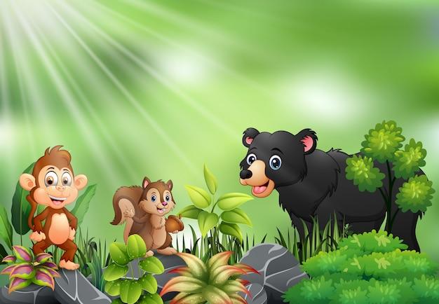 I cartoni animati della foresta degli animali si incontrano