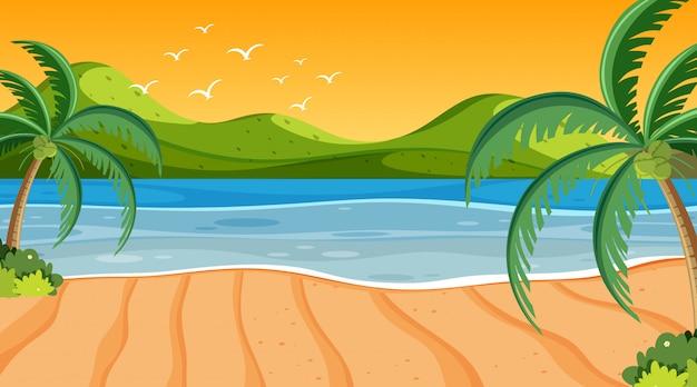 Scena della natura con i cocchi sulla spiaggia