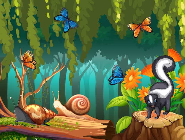 Scena della natura con la moffetta e le farfalle in foresta