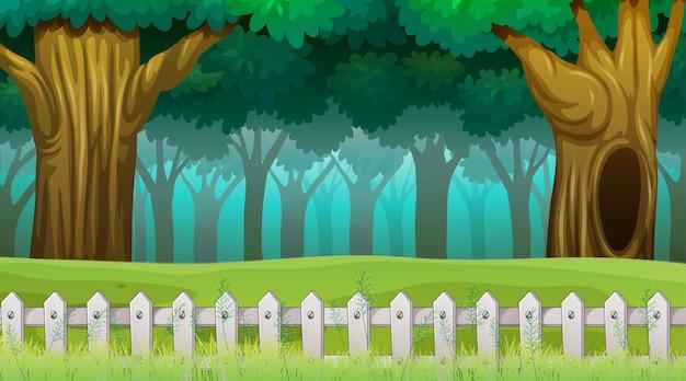 Scena di boschi con recinzione