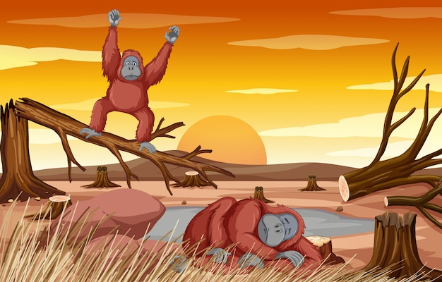 Scena di deforestazione con due scimpanzé che muoiono