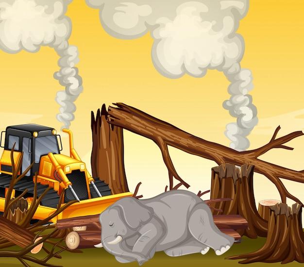 Scena di deforestazione con elefante che muore