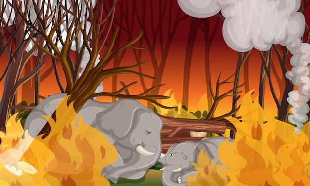 Scena di deforestazione con elefante morente