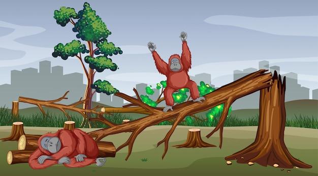 Scena di deforestazione con scimmia che muore