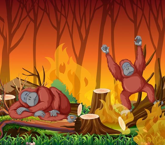 Scena di deforestazione con scimmia e incendi