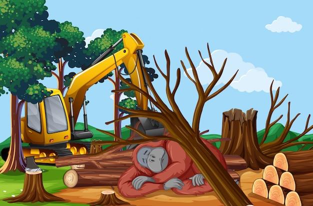 Scena di deforestazione con scimmia morente