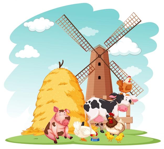 Scena di fattoria con animali da fattoria in fattoria