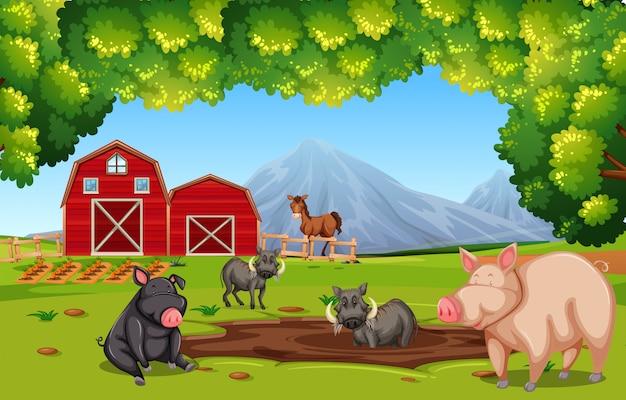 Scena di fattoria con animali