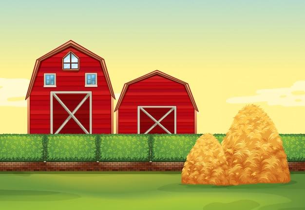 Scena di fattoria con fienili e mucchi di fieno