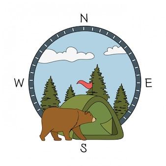 Scena di foresta di alberi di pini con orso grizzly