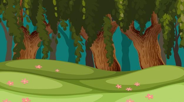 Scena di sfondo all'aperto in legno