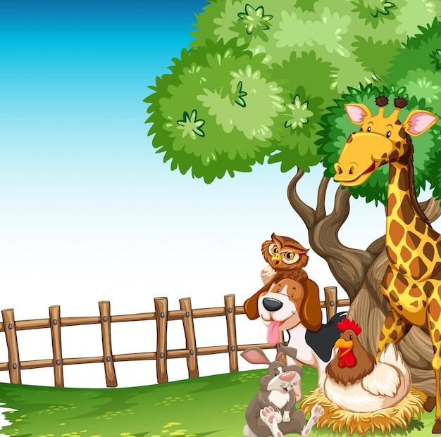 Scena di sfondo con animali da fattoria nel campo