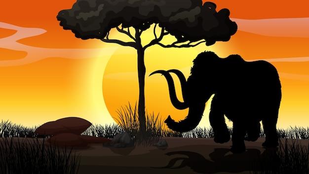 Scena di tramonto silhouette natura all'aperto