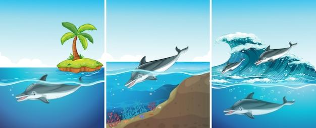 Scena oceano con il nuoto dei delfini