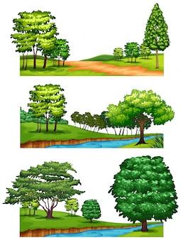 Scene della natura con alberi e fiumi