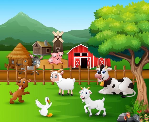 Scene di fattoria con diversi animali nell'aia