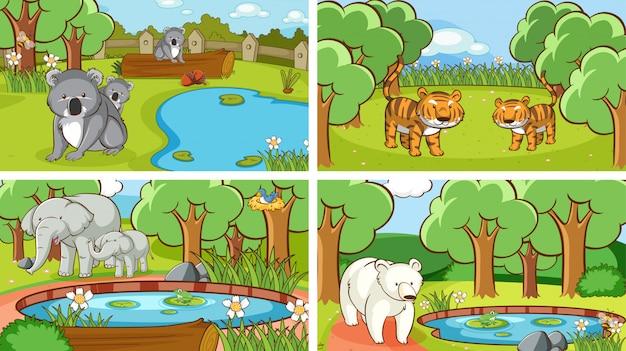Scene di fondo di animali allo stato brado