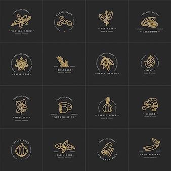 Scenografia modelli logo monocromatico ed emblemi - erbe e spezie. icona di spezie diverse. loghi in stile lineare alla moda isolato su sfondo bianco.