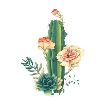 Scheda con set di cactus e succulente