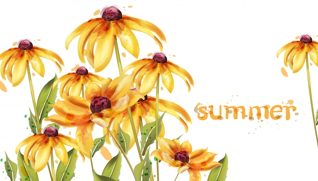 Scheda dell'acquerello di fiori gialli