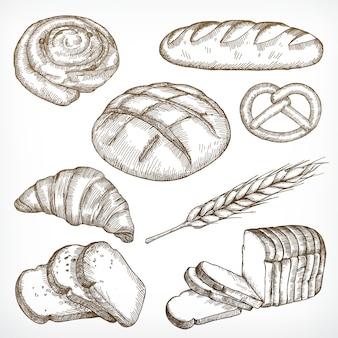 Schizzi di pane, disegno a mano, set