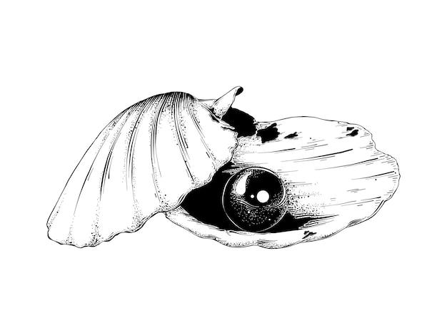 Schizzo disegnato a mano di conchiglia con perla in nero