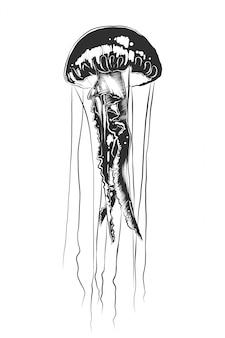 Schizzo disegnato a mano di meduse in bianco e nero