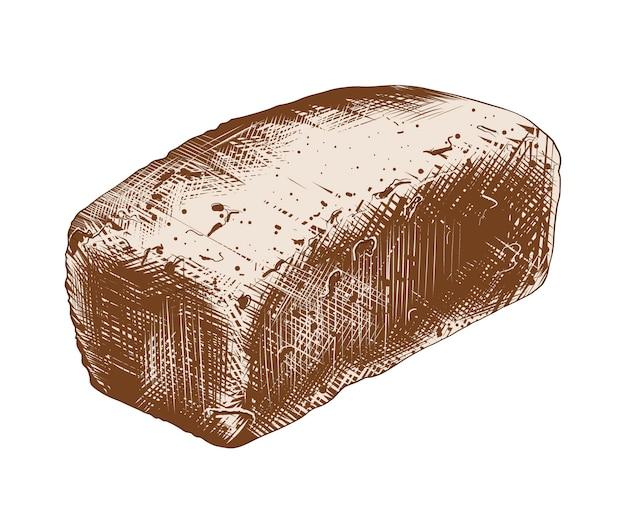 Schizzo disegnato a mano di pane integrale in variopinto