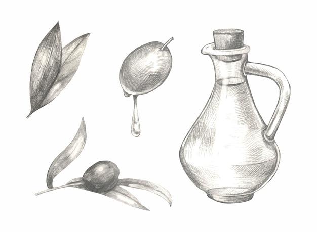 Schizzo disegnato a mano insieme di olive.