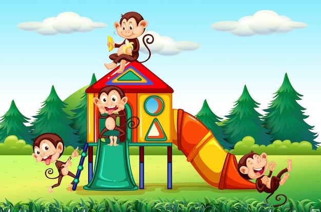 Scimmia che gioca nel parco giochi