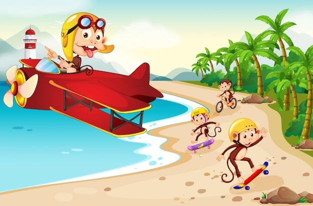Scimmia giocosa in spiaggia
