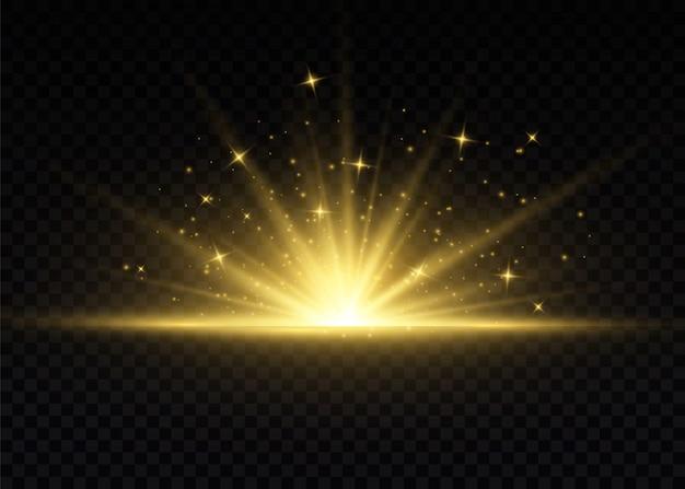 Scintille di polvere e stelle dorate brillano di luce speciale.