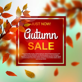 Sconto vendita autunno