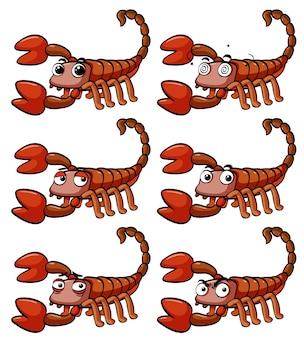 Scorpione con diverse espressioni facciali