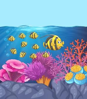 Scuola di pesce nella barriera corallina