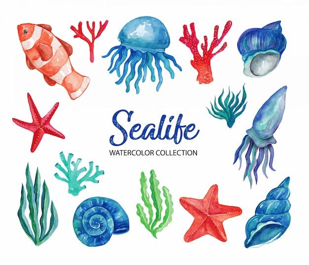 Sealife watercolor elementi
