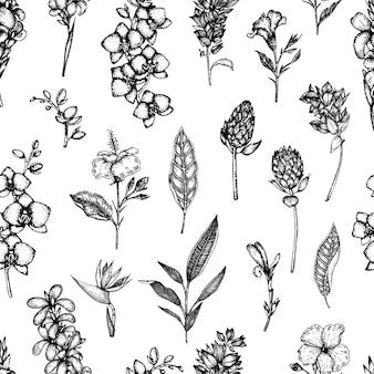 Seamless di fiori tropicali isolati. disegnati a mano sfondo floreale.