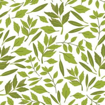 Seamless pattern di erbe